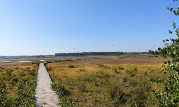 Cache route van de maand: De parels in Huis ter Heide