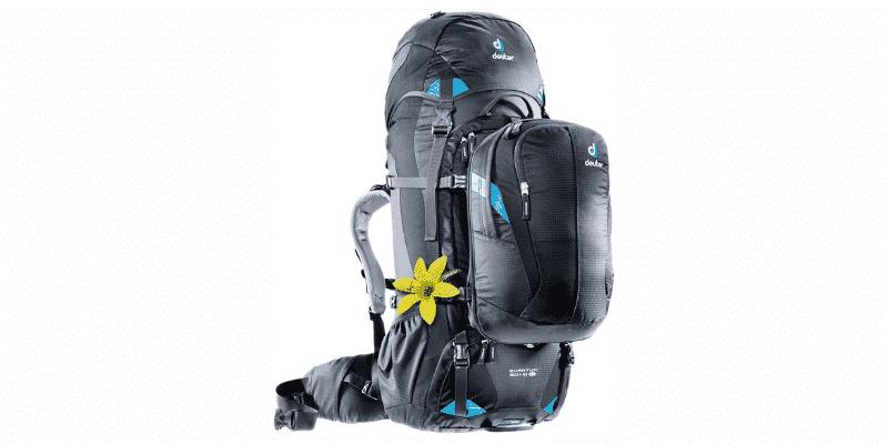 Deuter Quantum Backpack