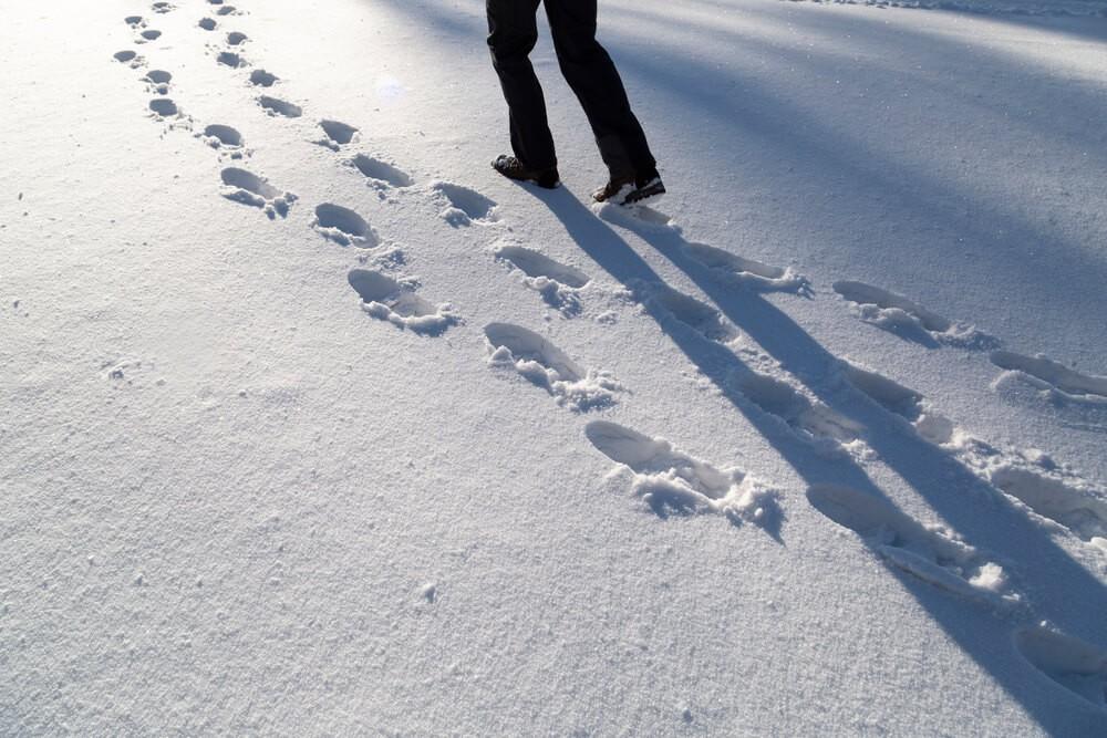 Sneeuw Wandeling