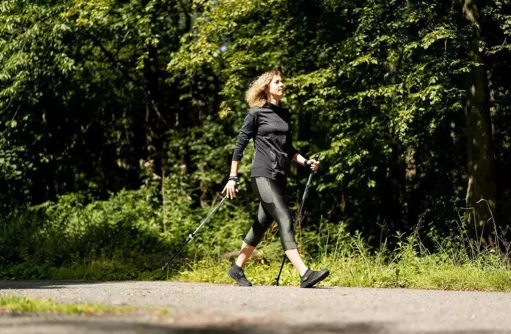beste nordic walking sticks